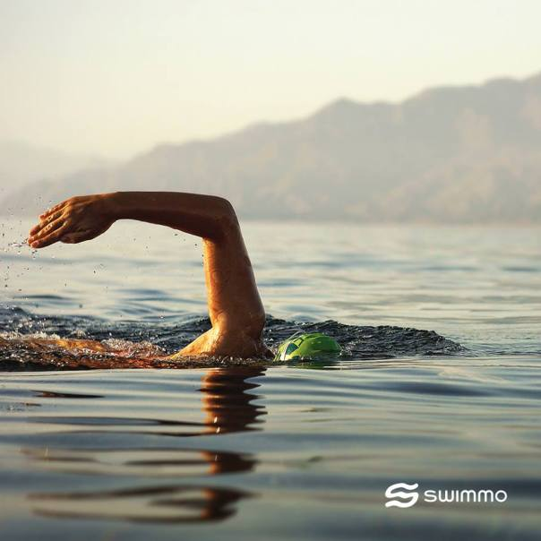 swimmo3
